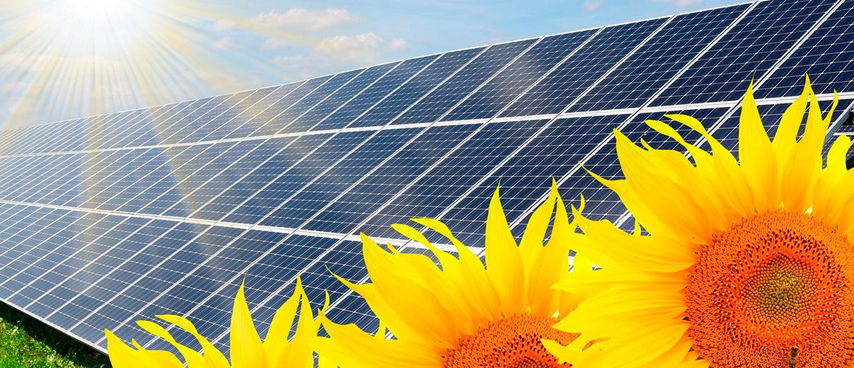 La electricidad solar es respetuosa con el medio ambiente